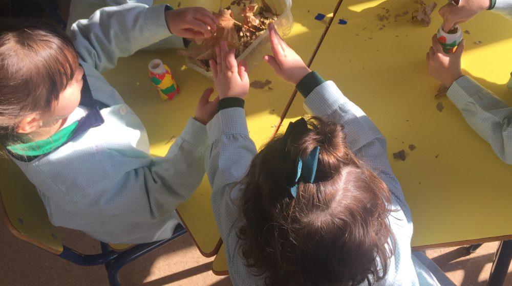 Proyectos de comprensión Infantil colegio concertado bilingüe María Virgen Chamartín