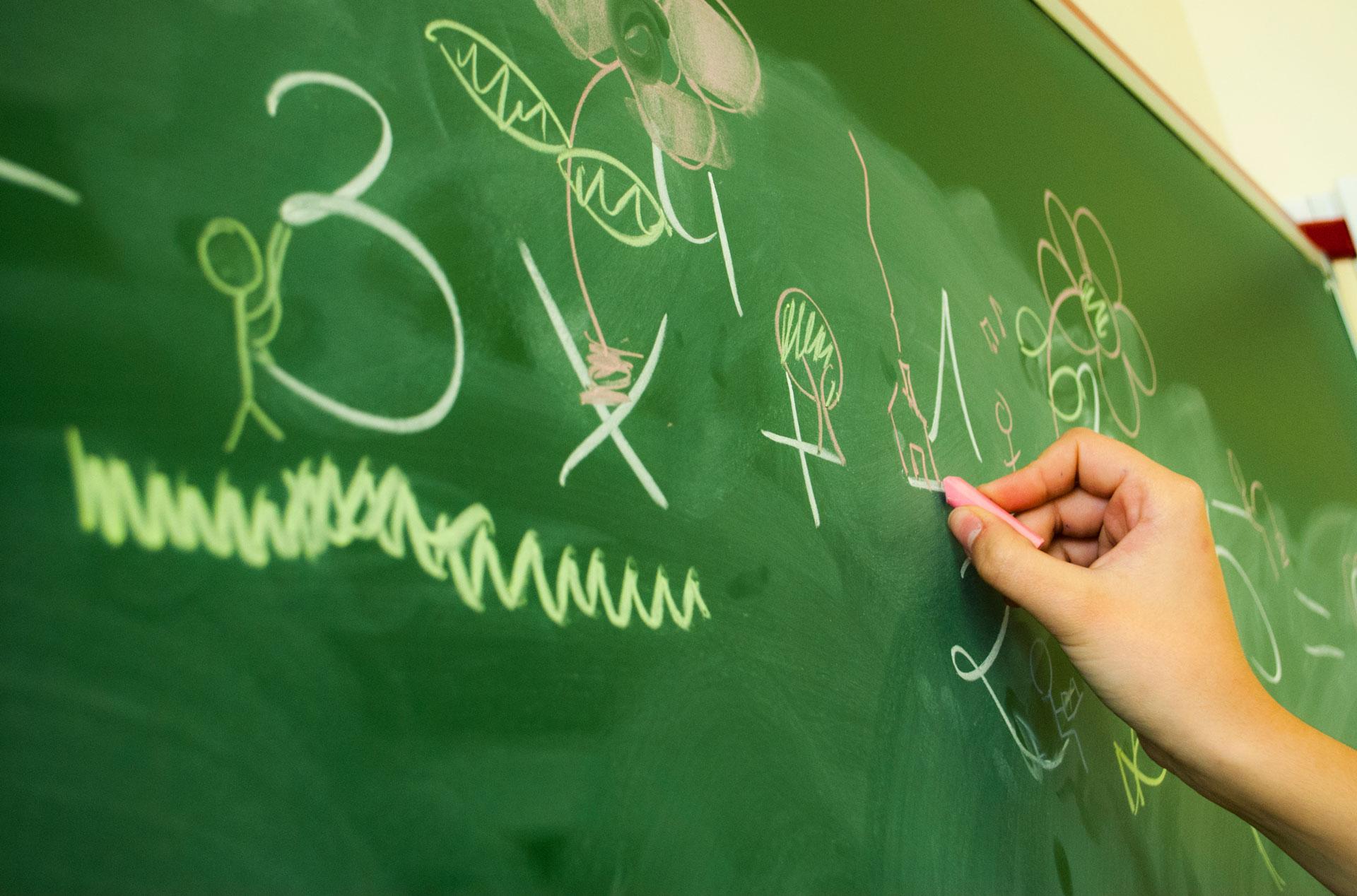 Inteligencias Múltiples - Colegio Bilingue Maria Virgen Madrid